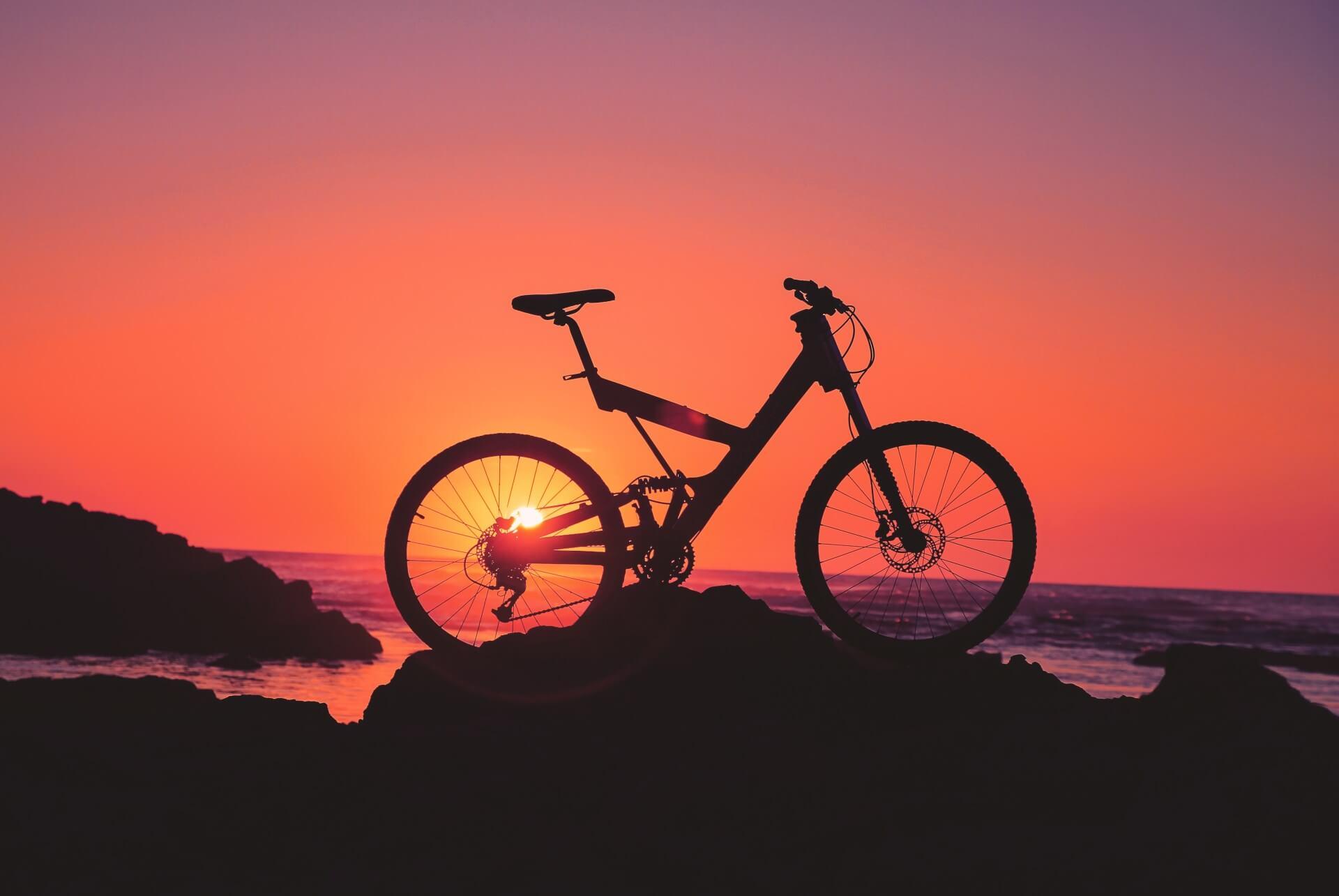 Trinkflasche Fahrrad EVI Cupassion